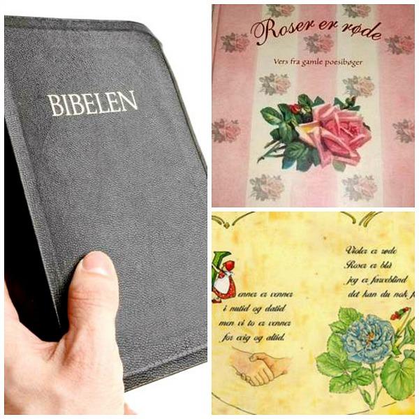 Poesi Bibel